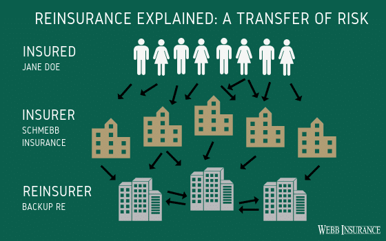 Reinsurance Explained Infographic