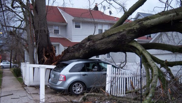 Storm damage of a large tree fallen on the roof of a silver car parked in the driveway of a house with a red roof and white fence.